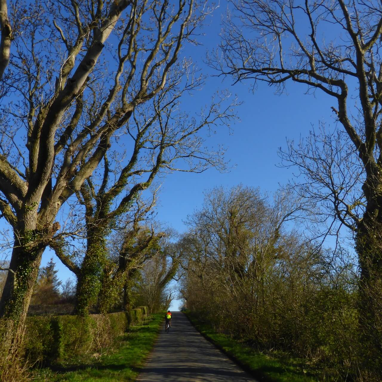 National Byway Cycle Route