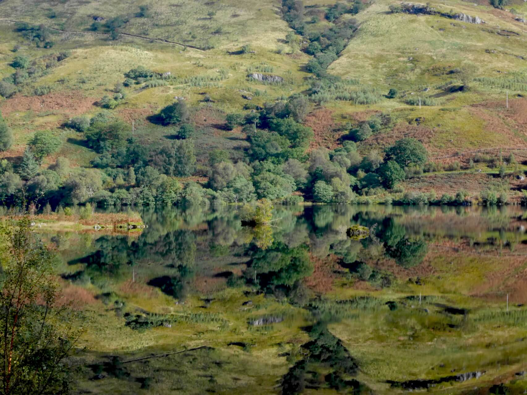 Trees reflected on the surface of Loch Arklet